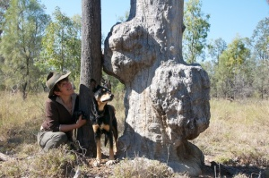 Alison and Brownie Brass on Bimblebox Nature Refuge, September 2012.  Photo courtesy of Alison Clouston and Boyd.