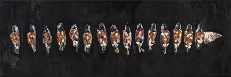 EmmaLindsay-15endangered black-throated finches lineup-2014-oil on linen-Photo_Elouise-HiRes