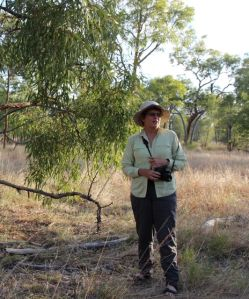 Glenda Orr on Bimblebox Nature Refuge, September 2012.