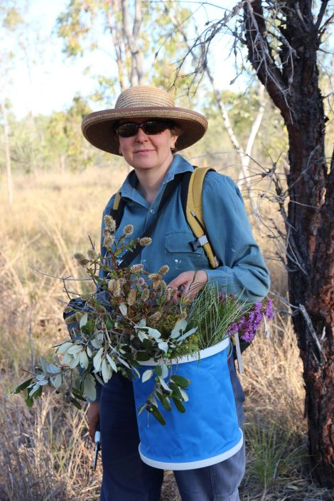 Jill Sampson, Bimblebox Nature Refuge, September 2012