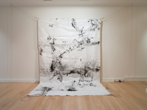 Shroud for an ancient basin, 2013, Jude Roberts, photo Carl Warner.  Currently on tour with Bimblebox: art - science - nature.