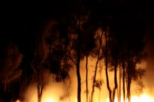 Fire on Bimbleboxphoto by Glenda Orr