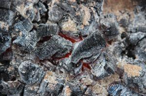 Hot Coals, Bimblebox, by Jill Sampson