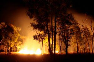 Fire on Bimblebox by Glenda Orr