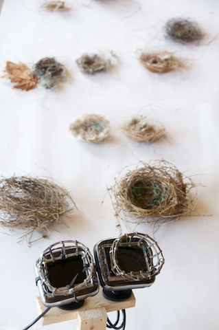 I got out my urban birdnest collection, thinking about vulnerable homes got me thinking about refugee nests, urban fringes of the world, shanty towns...