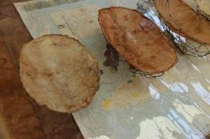 Vanishing Food Bowls, detail
