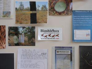 Meanwhile at Bimblebox (detail), Samara McIlroy
