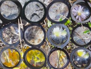 Multifocal (detail), Glenda Orr