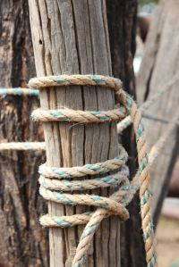 rope and wire, photo by Jill Sampson