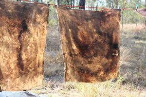 Jill's eco dyed wool blankets, photo by Jill Sampson