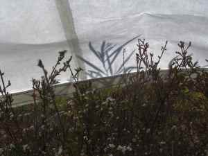 Jude Roberts, tarpaulin in the landscape, photo courtesy of artist