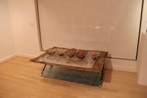 Vaishing Food Bowls, Jill Sampson, 2013