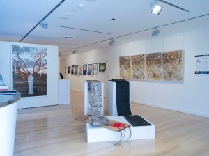 Bimblebox: art - science - nature at Redland Art Gallery, photo by Carl Warner