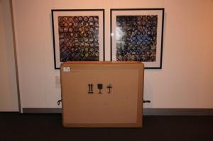 Multifocal (by Glenda Orr) peers down at it's crate.