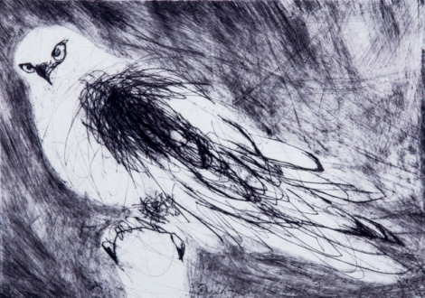 Birds_